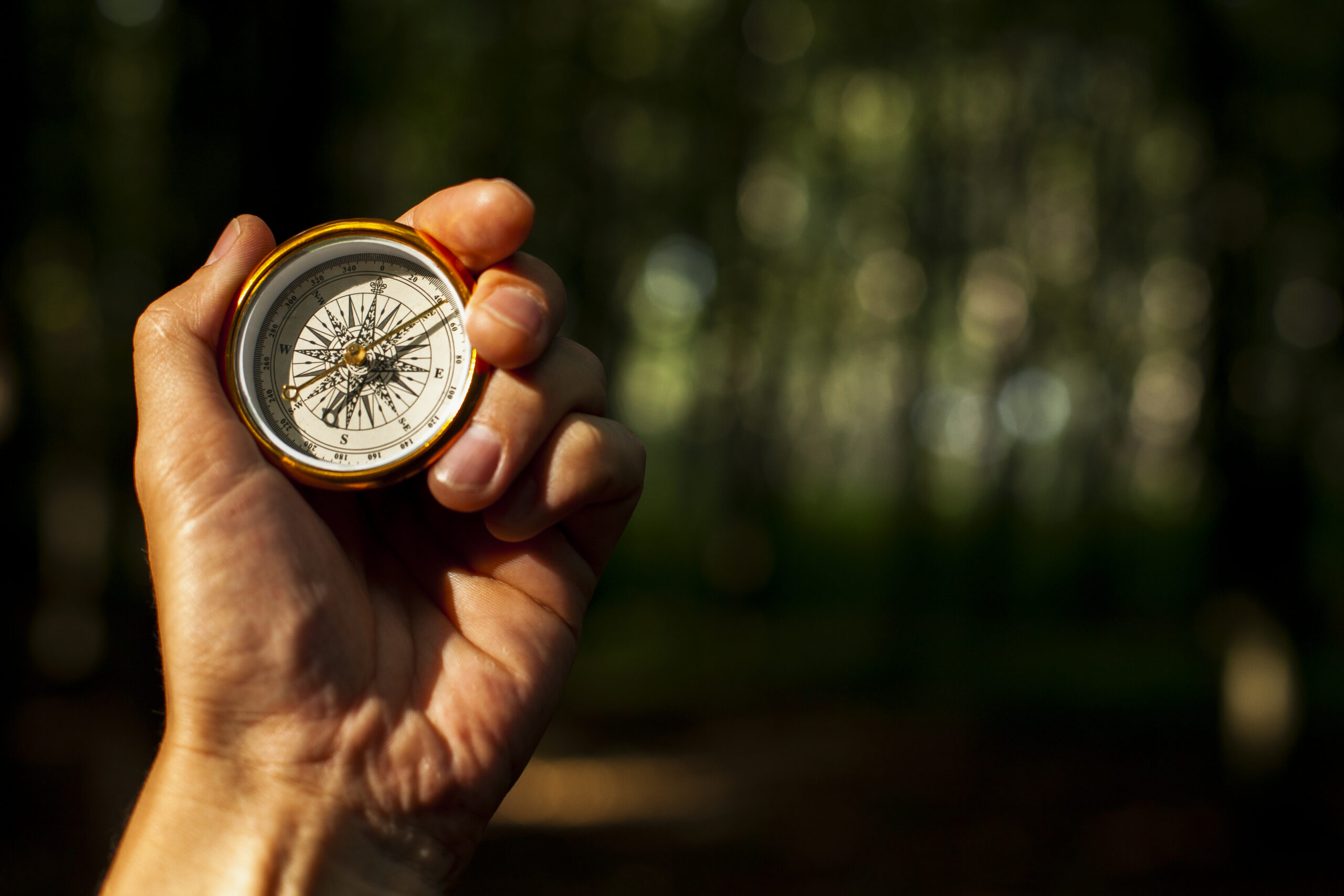 hand-holds-compass-with-blurred-background